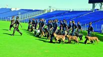 Dogs keep fans at bay during first India-Sri Lanka T20