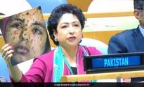 India shames Pak at UN for fake pic