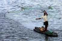 Sri Lankan courts order release of 66 Indian fishermen