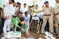 Bapat inaugurates tree plantation drive