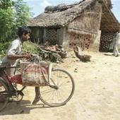 Some 30% rural households belong to SC/ST category: Census