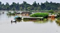 Flood fury in Assam: 19 lakh affected, Kaziranga submerged; Rajnath Singh to survey worst-hit areas