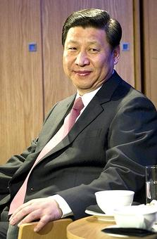 China ready to sign friendship treaties with all neighbours: Xi