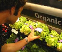 Affluent Indians develop taste for organic food