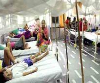 Dengue deaths touch 100 in Lucknow, more people test positive