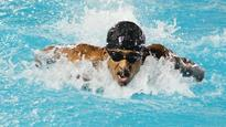Swimmers Strike Gold for State